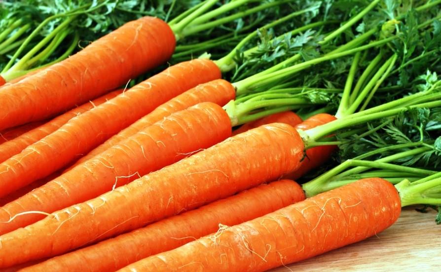 Польза моркови для печени