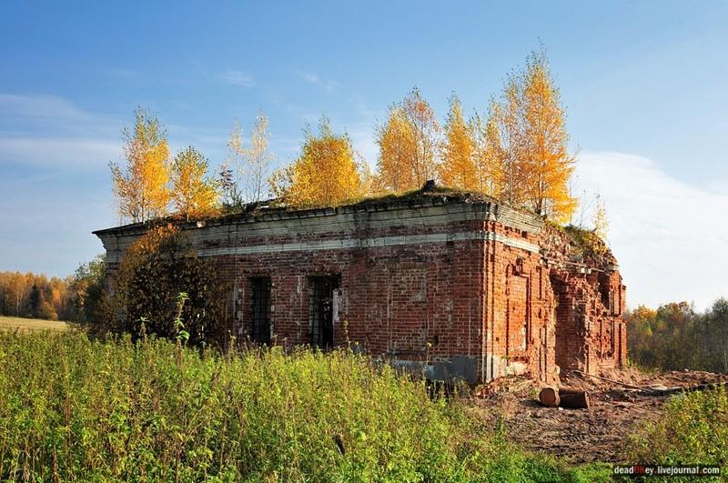 Руины усадьбы Путятино