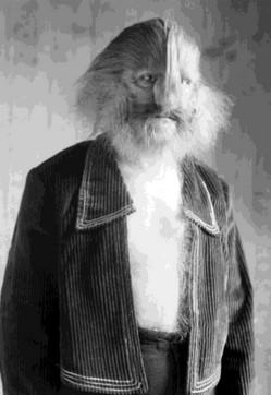 Стефан Бибровский