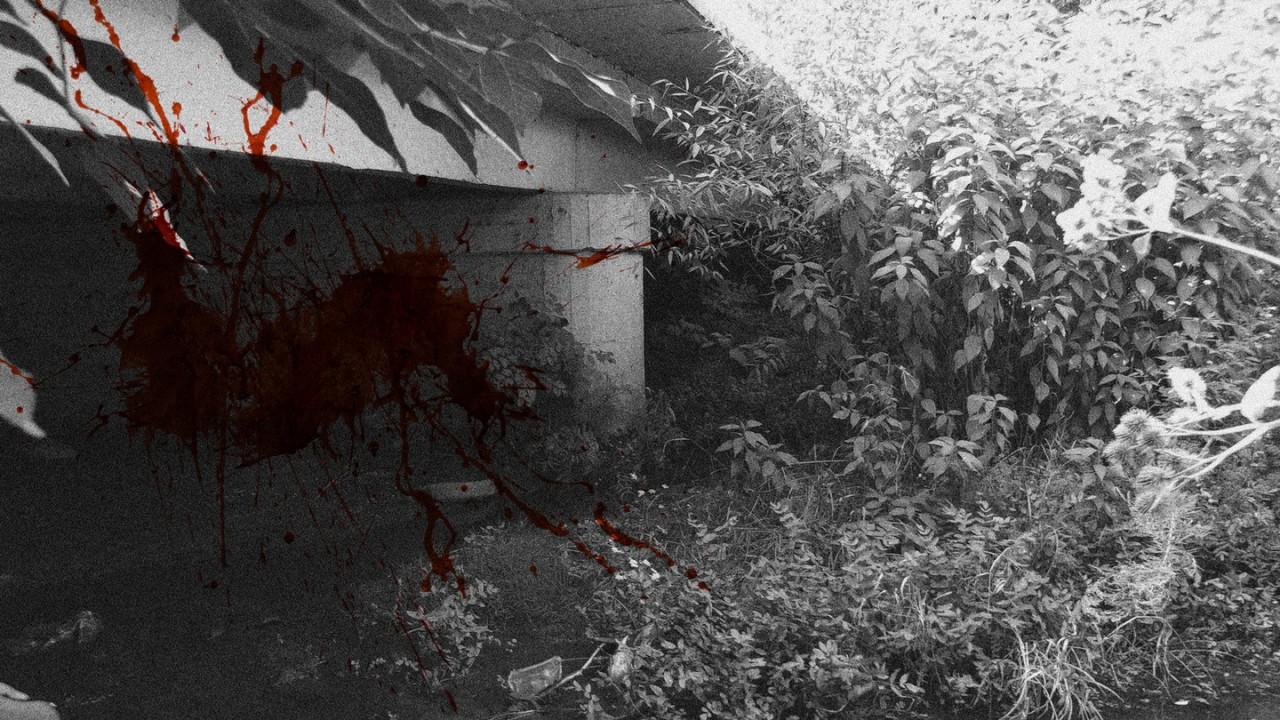 Место обнаружения тела – Грушевский мост