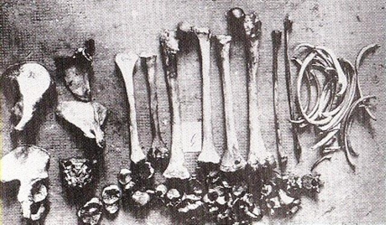 Найденные останки жертв Фрица Хаармана